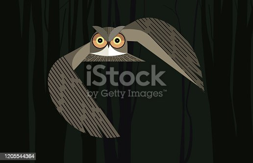 istock Owl in the night forest 1205544364