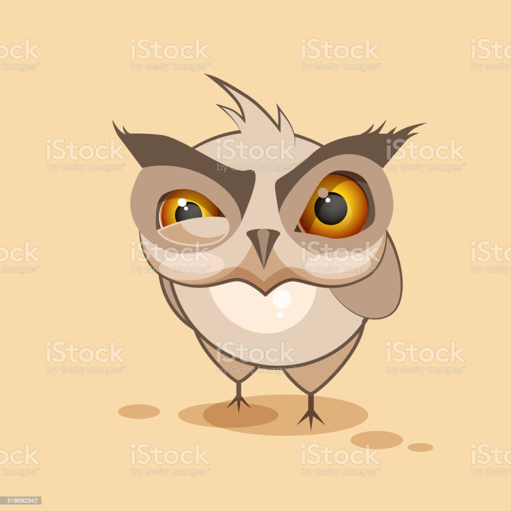 Owl is angry