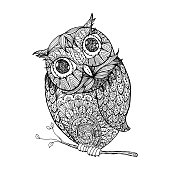 Owl. Isolated illustration with ornanets fill for adult