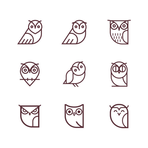 owl line icon collection. - sowa stock illustrations