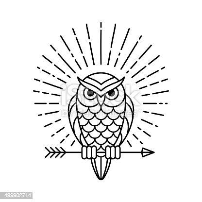 istock Owl line icon 499902714