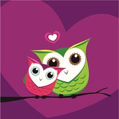 Owl love on a branch