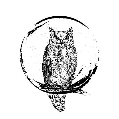 Owl on round grunge background.