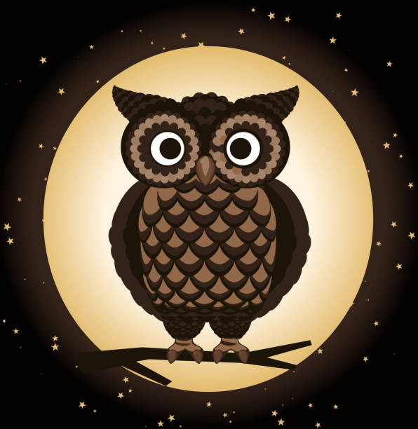 owl perching at night - great horned owl stock illustrations, clip art, cartoons, & icons