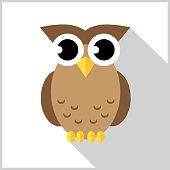 Vector illustration of a cute big eyed owl with a shadow on a white background with a gray border.