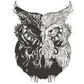 Vector owl in black white decorated with vintage ornament