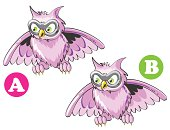Owl spot the 7 differences