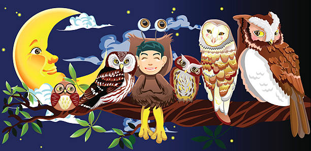 owl story - great horned owl stock illustrations, clip art, cartoons, & icons