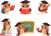 Owl teacher. Cartoon bird characters with back to school items cute mascots reading pointing vector illustrations