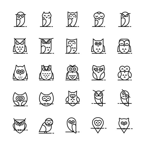 owl vector icons collection in line style. - sowa stock illustrations
