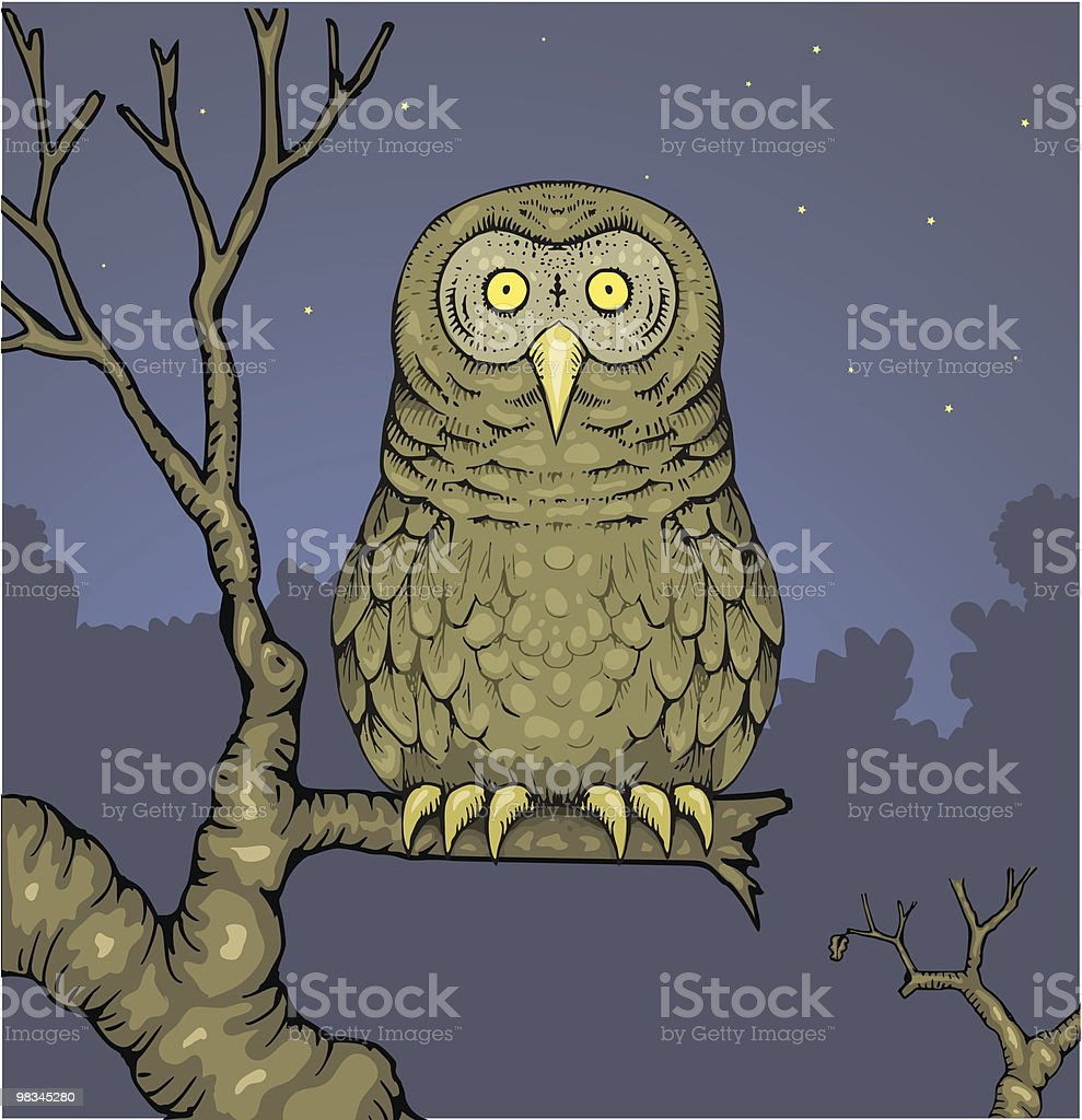 Owl royalty-free owl stock vector art & more images of animal body part