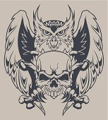 Owl with crossbones