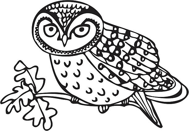 owlet - great horned owl stock illustrations, clip art, cartoons, & icons