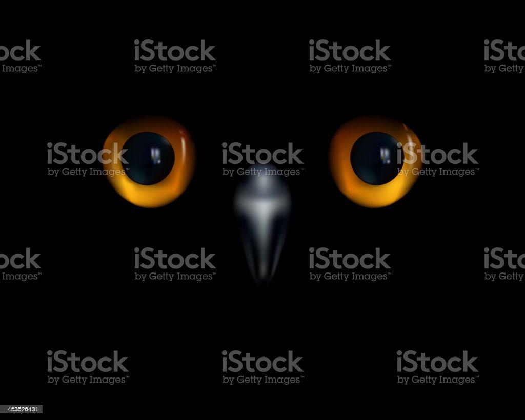 Owl's eyes vector art illustration