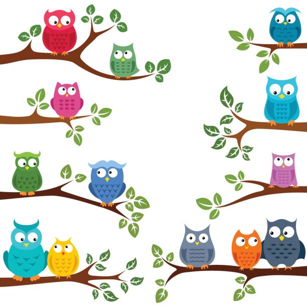 owls in love - sowa stock illustrations