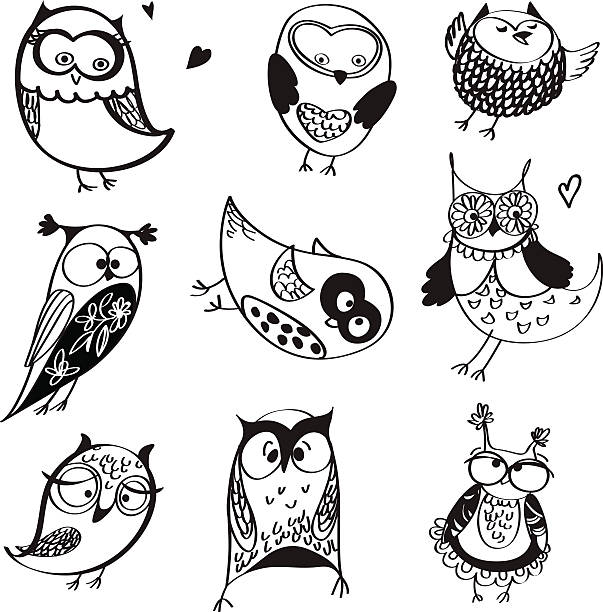 owls line drawings - black and white owl stock illustrations, clip art, cartoons, & icons