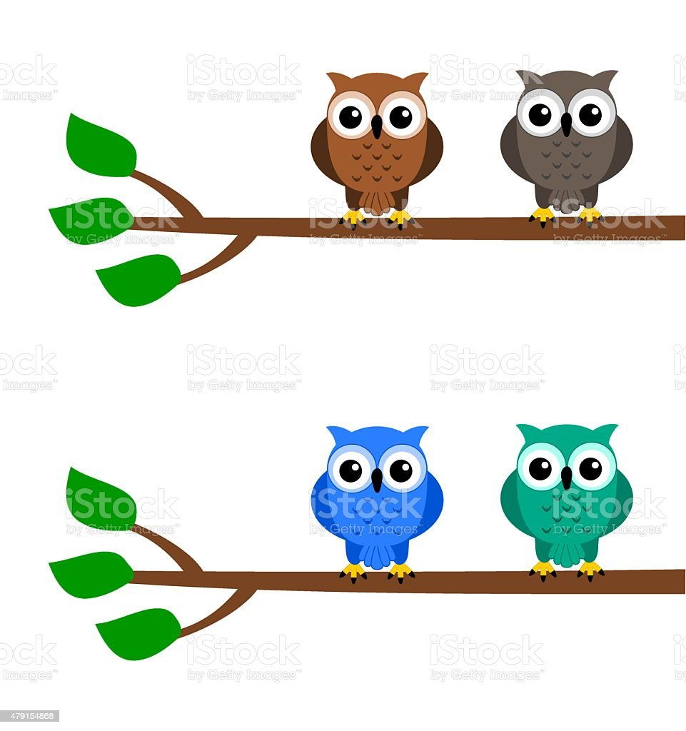 owls on a branch vector art illustration