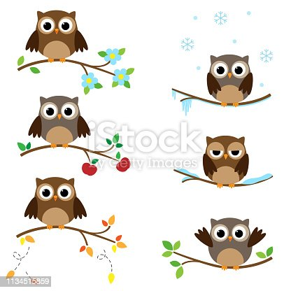 Set of branches with sitting owls. Different seasons of the year