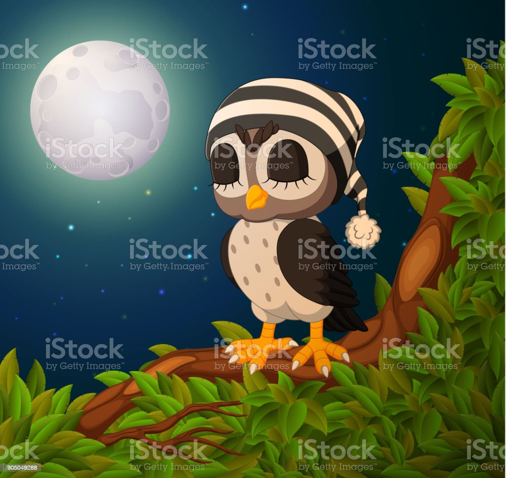 owls on the tree branch in night vector art illustration