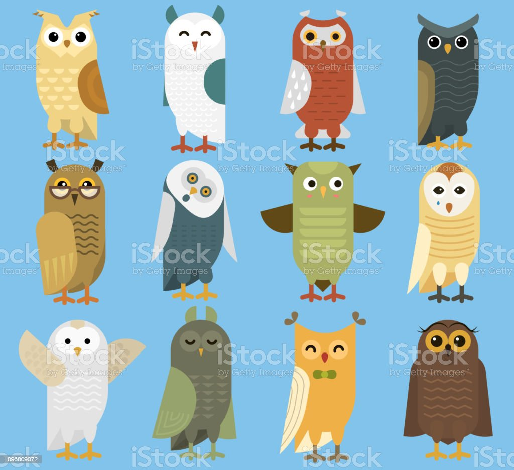 8bbedaa86 Owls vector cartoon cute bird set owlet character kids animal baby art for  children owlish collection isolated on background - Illustration .