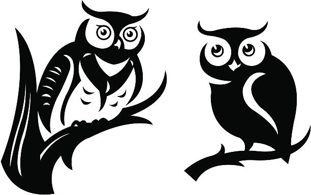 owls - black and white owl stock illustrations, clip art, cartoons, & icons