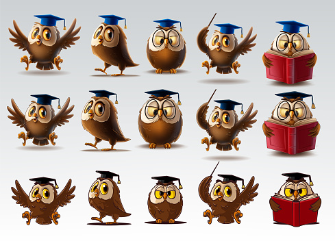 owls with graduation hat for back to school