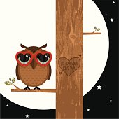 owl on a branch in love