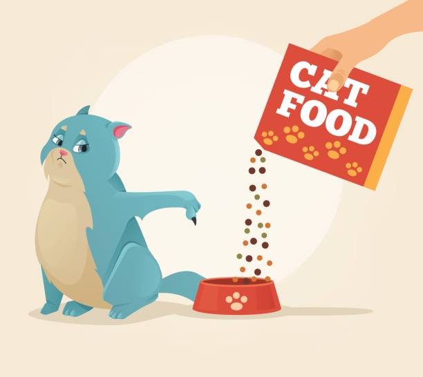 ilustrações de stock, clip art, desenhos animados e ícones de owner hold carton box with food and feeding his brazen cat character - lata comida gato
