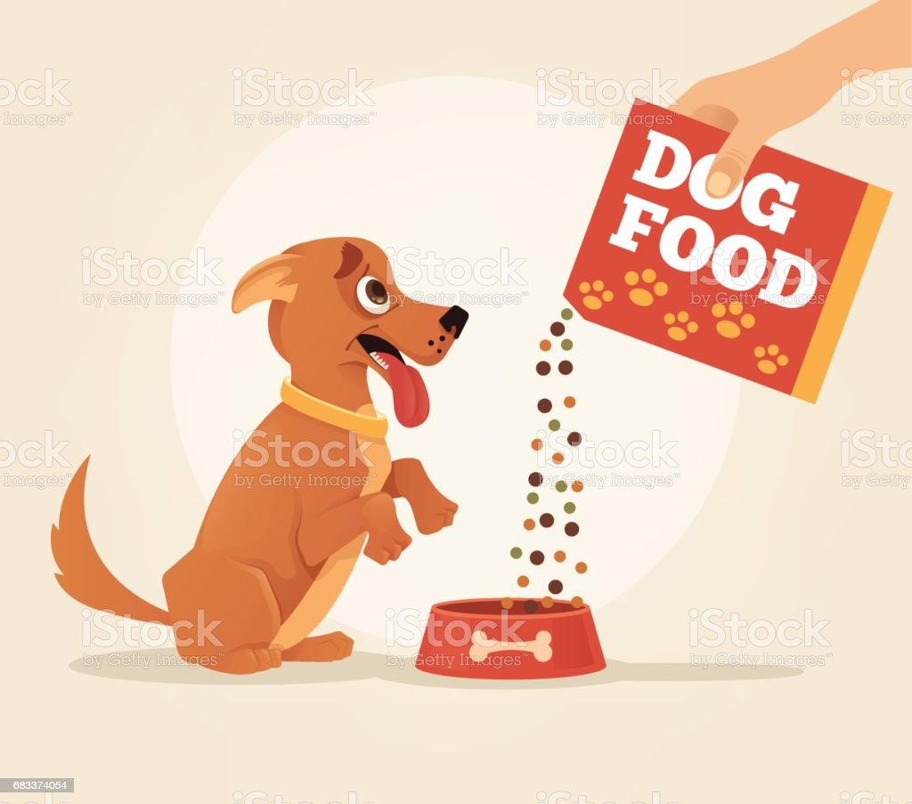 Owner hold carton box with food and feeding his happy smiling dog friend character vector art illustration