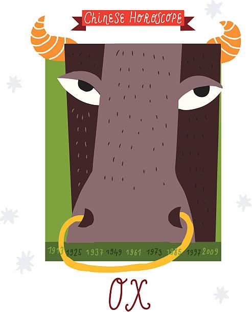 ox. horoskop vektor-zeichnung. - lustige kuh bilder stock-grafiken, -clipart, -cartoons und -symbole