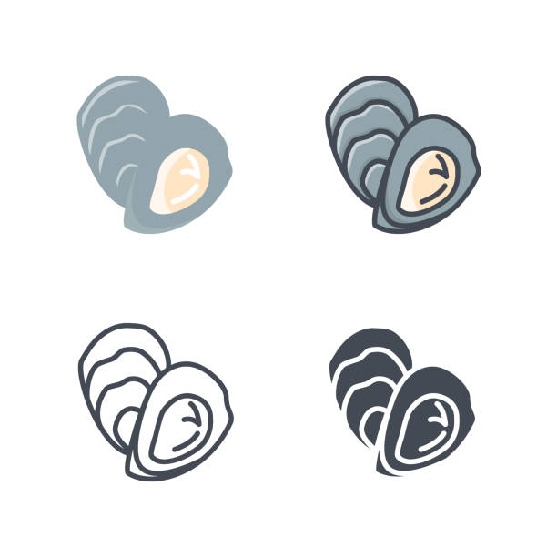 Oyster seafood icon vector colored flat line vector art illustration