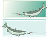 Pacific Salmon Banner/Sign