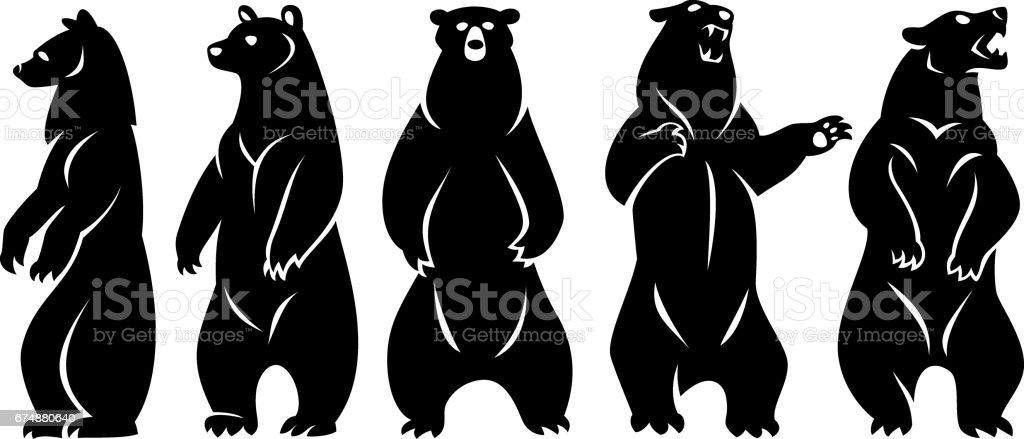 Paketi ayılar vektör sanat illüstrasyonu