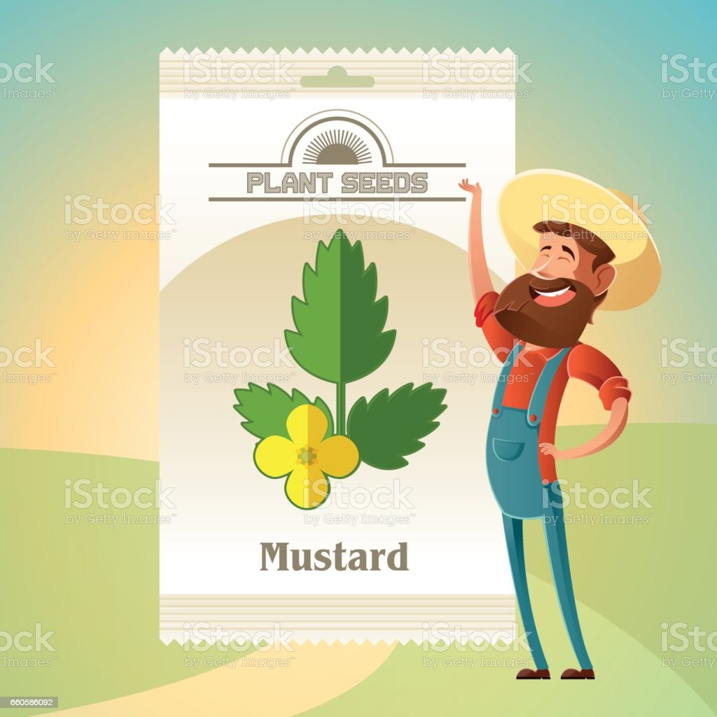 Pack of Mustard seeds icon royalty-free pack of mustard seeds icon stock vector art & more images of agriculture
