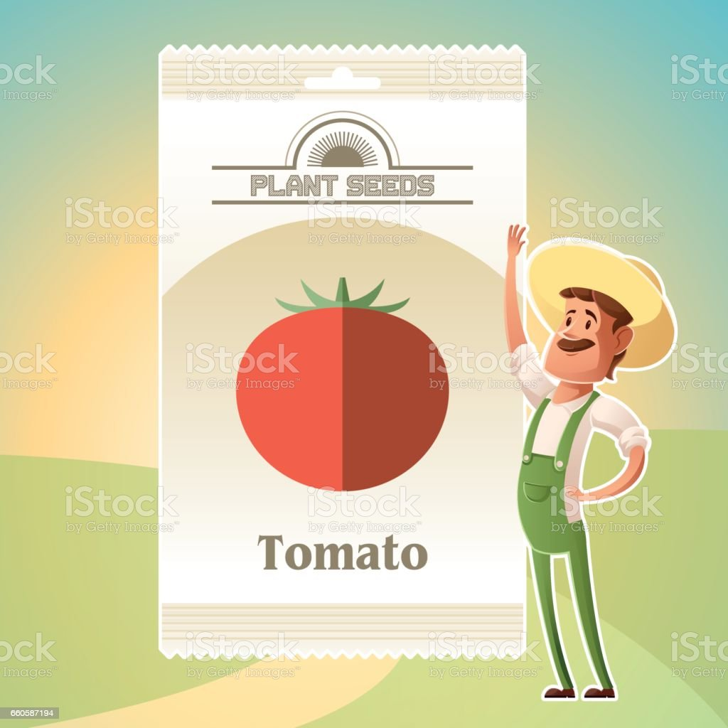 Pack of Tomato seeds royalty-free pack of tomato seeds stock vector art & more images of agriculture
