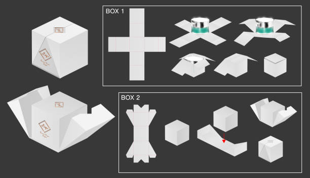 package box die cut with 3d mock up vector art illustration