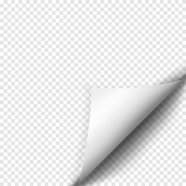 strona curl z cień na pusty arkusz papieru - skórka stock illustrations