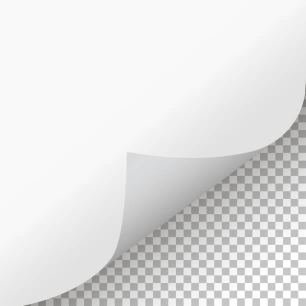 illustrazioni stock, clip art, cartoni animati e icone di tendenza di arricciatura della pagina con ombreggiatura su sfondo isolato - facciata