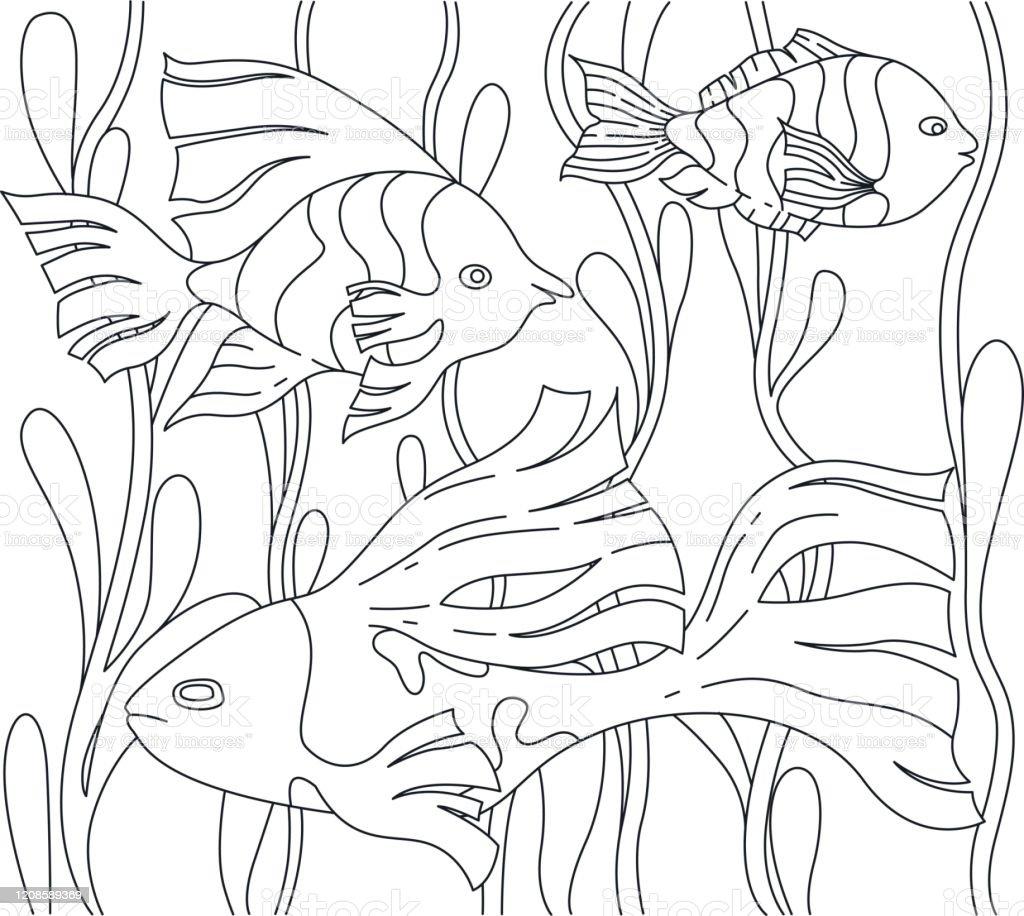 Page Pour Livre De Coloriage Avec Le Poisson Et Les Algues Vecteurs libres  de droits et plus d'images vectorielles de Animaux à l'état sauvage