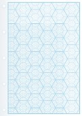 Page of Uncommon Graph Paper.