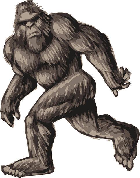 painted bigfoot vector art illustration
