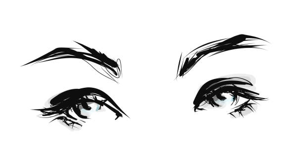 Painted female eyes Vector illustration beautiful woman stock illustrations
