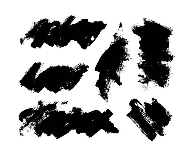 Painted grunge brush strokes vector collection. Hand drawn ink brush stroke, line, box, design elements, background isolated on white. Painted grunge brush strokes vector collection. Hand drawn ink brush stroke, line, box, design elements, background isolated on white.  Abstract texture background. Place for text. pap smear stock illustrations