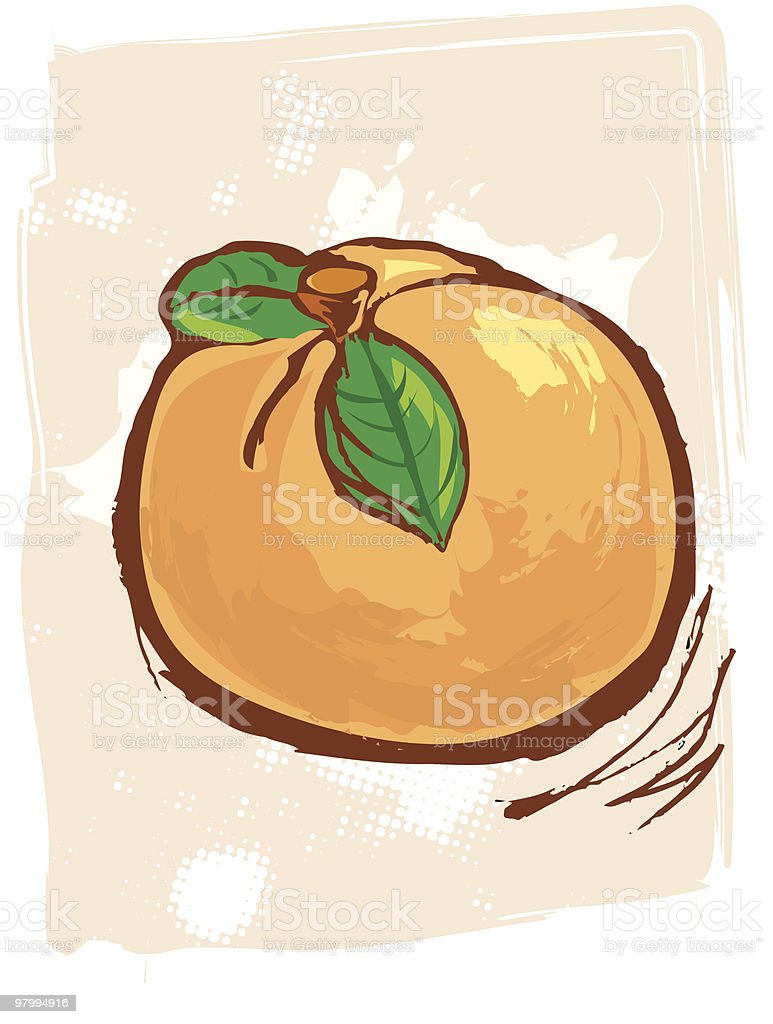 painted peach royalty free painted peach stockvectorkunst en meer beelden van achtergrond - thema