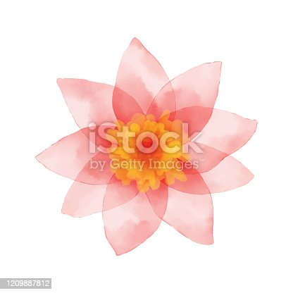 Vector illustration of pink flower.