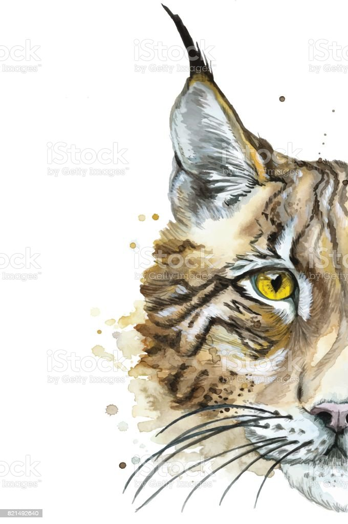Eine Gemalte Aquarell Zeichnung Ein Tier Saugetier Eine Wilde