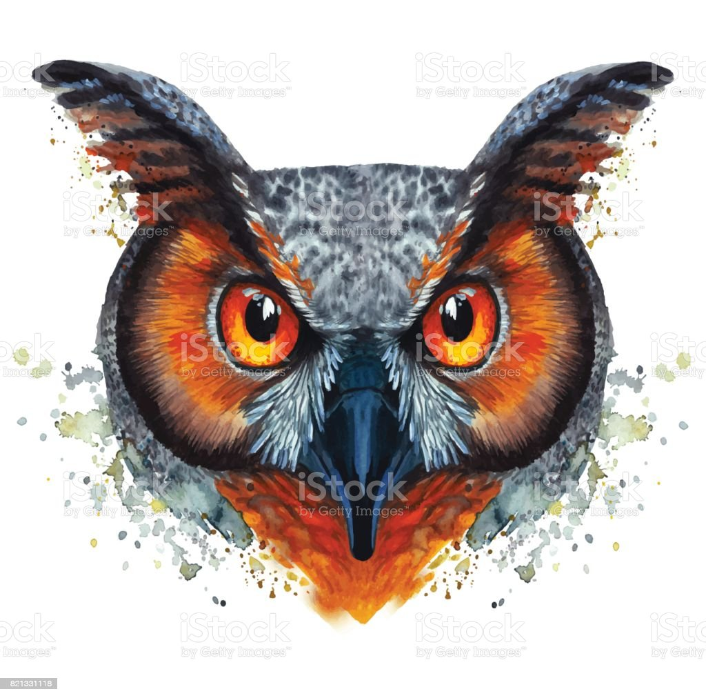 Painted watercolor picture of a ravenous night owl bird on a white background with red orange eyes vector art illustration