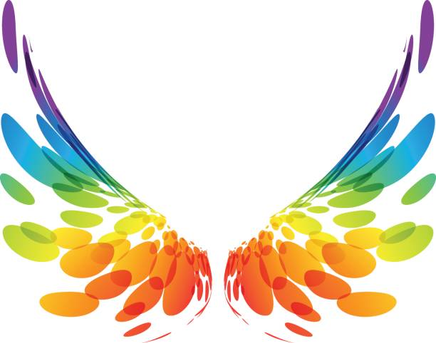 pair colorful wings on white - animal wing stock illustrations