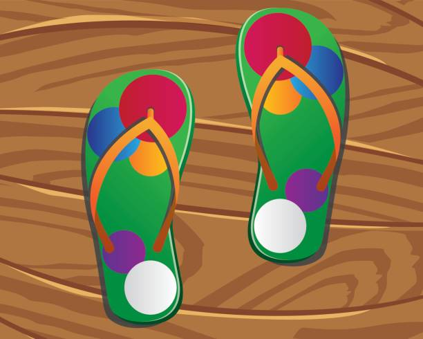 51d77cbc97082 Royalty Free Summer Colorful Flipflops In Circle Isolated Clip Art ...