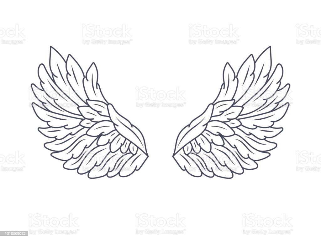 Ailes D Ange Dessin une paire dailes dange grande ouvertes contour de dessin dans un